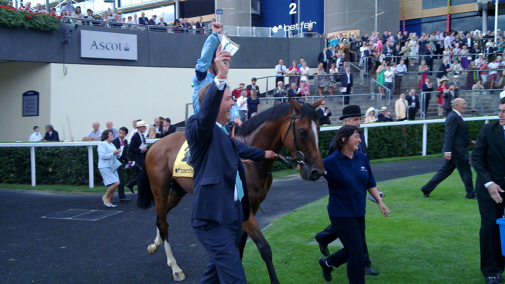 Harbinger_at_2010_King_George_VI_and_Queen_Elizabeth_Stakes